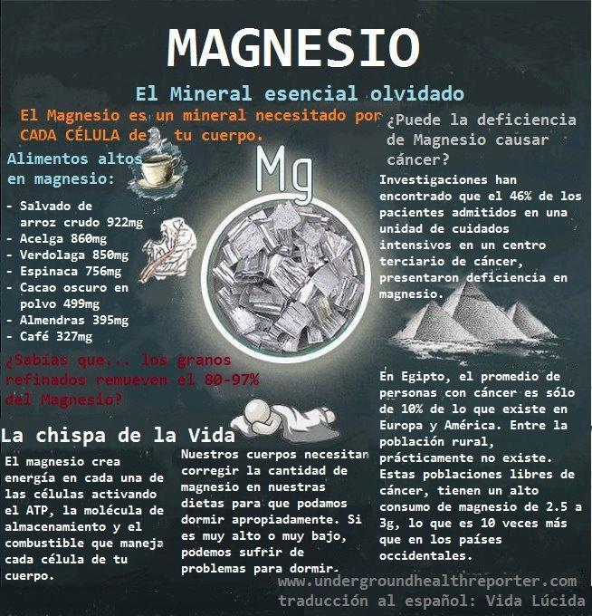 infografía magnesio