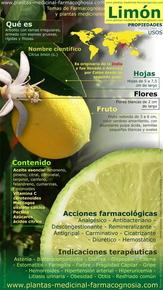 infografia limon